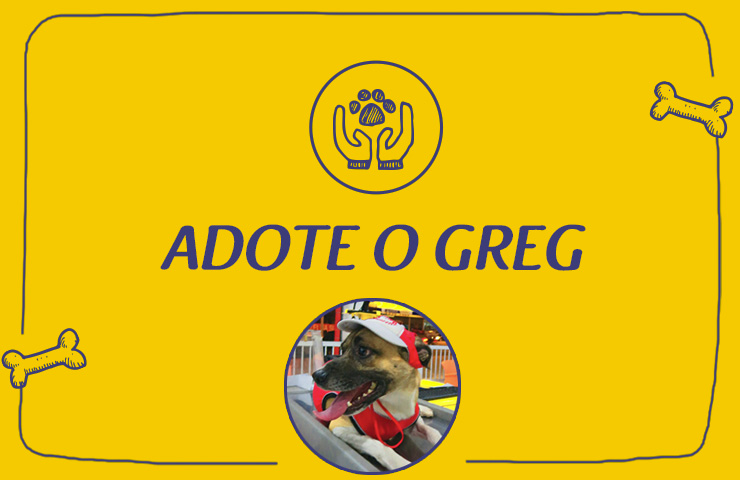Animale – Adoção do Greg
